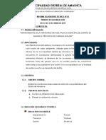 4. INFORME DE ASISTE TÉCNICO - VAL. N° 02