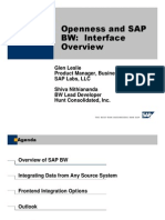 Openness and SAP BW - Interface Overview