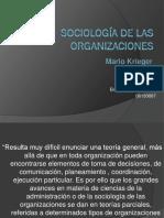 krieger mario- sociologia-de-las-organizaciones-cap-11-y-12-