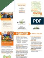 volunteer_brozzur.pdf