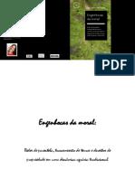 PEDROZA - Engenhocas_da_Moral