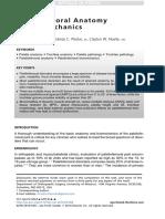 Patellofemoral Anatomy and Biomechanics