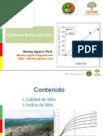 INDICE DE SITIO.pptx