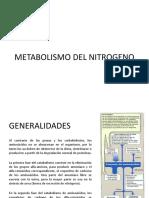 9-metabolismodelnitrogeno-090624171738-phpapp02