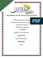 MOLECULAS ORGANICAS E INORGANICAS MELANIE.docx