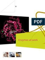 Enzymes_at_work