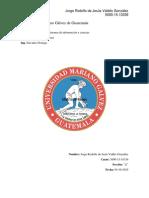 Matriz de Tipos de Redes Tarea I Final.docx