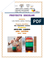 PROYECTO   ARCO IRIS  LIQUIDO