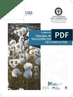 Curso-Trauma-Resiliencia-Resolución-de-Conflictos