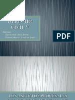 aspectos procesales de la herencia.pptx