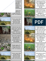 Ecological Succession Cards to order