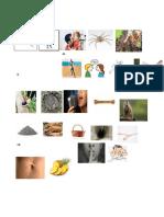 alfabeto q´eqchi solo imagenes