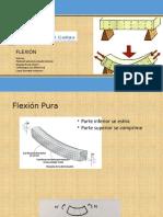 FLEXION PPT