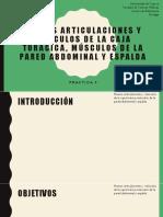 HUESOS-ARTICULACIONES