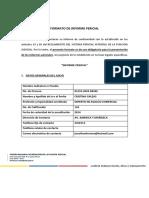 Formato de informe pericial Ecuador