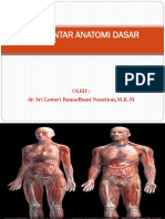 PENGANTAR ANATOMI DASAR PERTEMUAN PERTAMA-1.pdf