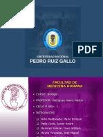 SeminarioI-BIOELEMENTOS,AGUA Y PROTEINAS