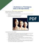 Cambios Anatómicos y Fisiológicos asociados al Envejecimiento