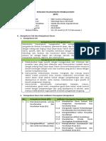 RPP TDO 3.1