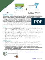Yellow-fever