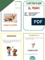 diptico perro