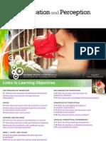 sensation and perception - psychology