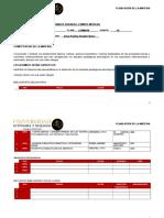 PLANEACIÓN PSICOANALITICA II.doc
