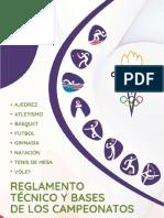 REGLAMENTO TECNICO Y BASES 2018-2019(5).pdf