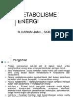 energi metab