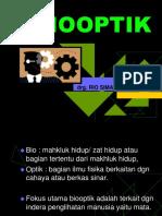 5. BioOptik.ppt