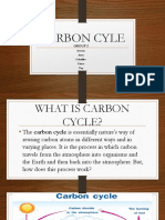 2 CARBON CYCLE