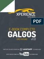 manual de analise de Galgos