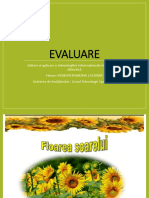 Floarea soarelui.pptx
