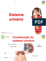 re82140_cv6_sistema_urinario