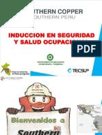 161136596-Induccion-SPCC-TOQUEPALA-v1-en-Revision.pdf