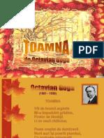toamna_o.goga