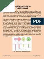 Actividad en clase 18 Material de lectura fluor y bromo.pdf