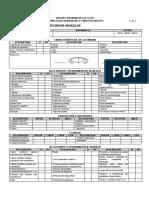 Formato_vehiculos_GASR