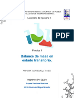 Práctica 1. Balance de masa en estado transitorio..pdf