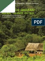 Coletivos Guarani No Rio Grande Do Sul