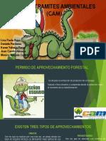 exposicion GUÍA DE TRAMITES AMBIENTALES (CAM)