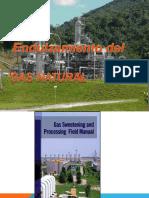 Endulzamiento_del_Gas_Natural capitulo 4.pdf