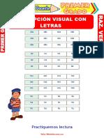 Percepción-Visual-con-Letras-para-Primer-Grado-de-Primaria