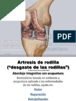 artrosisderodilla-171005170656
