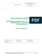 PE-OBS-29_DESGARROS_PERINEALES.pdf