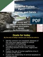 05.31.2_Pathology_of_the_Female_Reproductive_System_I_final_.pdf