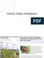 2019.-cultura-si-mediu.pptx