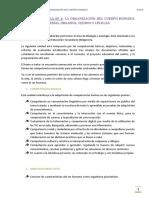 UNIDAD DIDÁCTICA Nº 1 valida.pdf