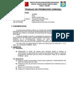 plan-de-promocion-comunal (2).docx