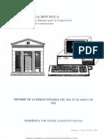 Informe_de_la_sesin_de_la_plenaria_del_da_25_de_mayo_de_1991